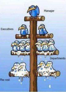 Agile werken kan niet in een organisatiehark